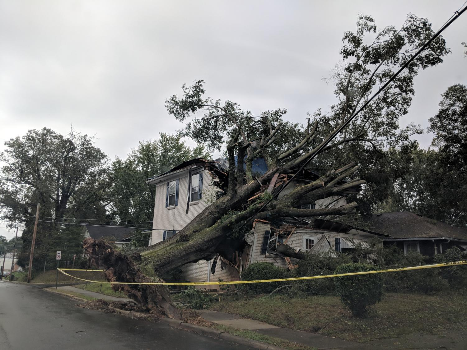 A house near Ballou Park is crushed by a fallen tree in the aftermath of Hurricane Michael. Businesses and homes were overcome by water and harsh winds uprooted trees, destroying structures and power lines. More than 20,000 customers were without power the morning of Oct. 12 and numerous roads closed.